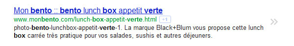 """Bonne utilisation de l'url rewriting avec la recherche """"bento box verte"""""""